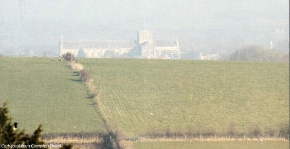 Cathedral from Compton Down